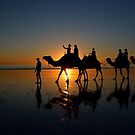 Camels on Cable Beach 2 by Stuart Row