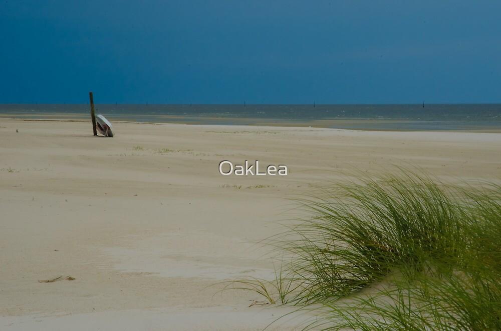 Mississippi Gulf Coast by OakLea