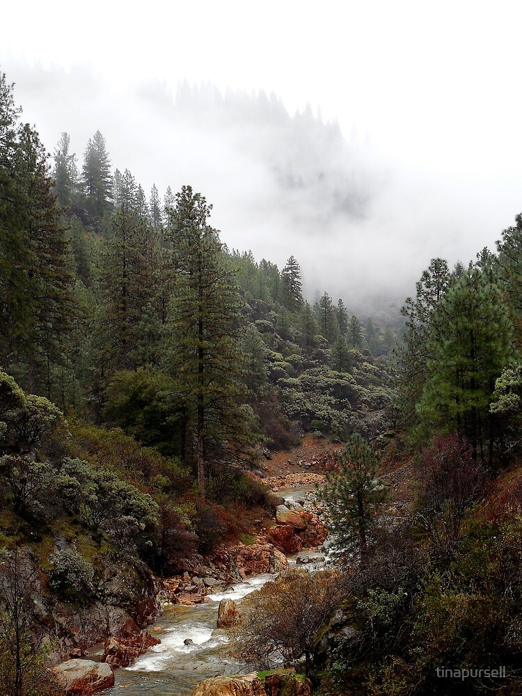 creek by tinapursell