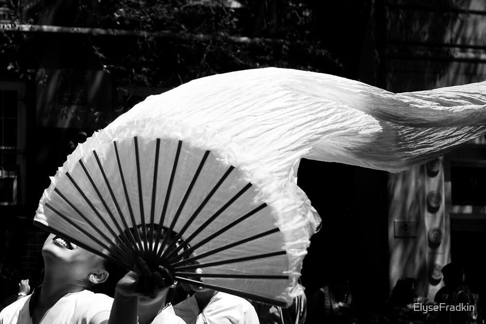 Fan in the Wind by ElyseFradkin