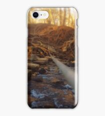Crossing the Stream iPhone Case/Skin
