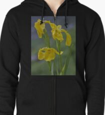 Yellow Flag Iris - Donegal Zipped Hoodie
