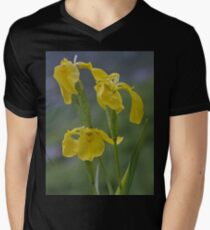 Yellow Flag Iris - Donegal Men's V-Neck T-Shirt