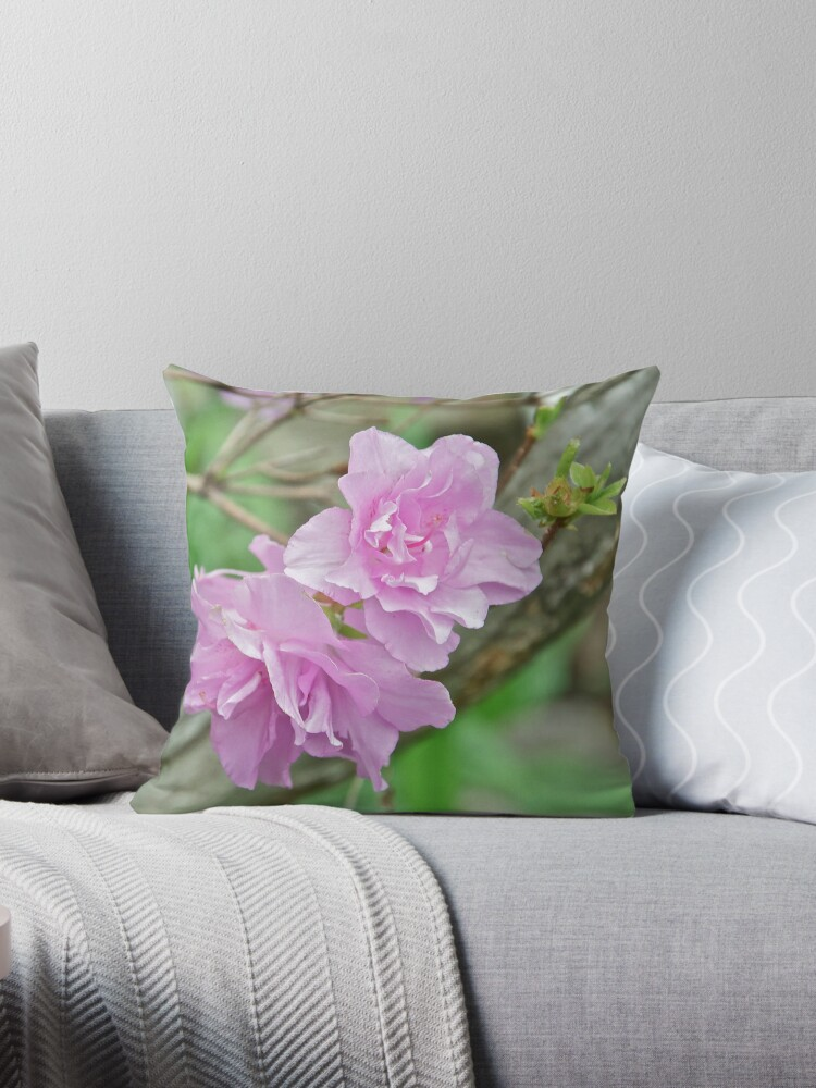 Pink Azalea 5 by Carolyn Clark