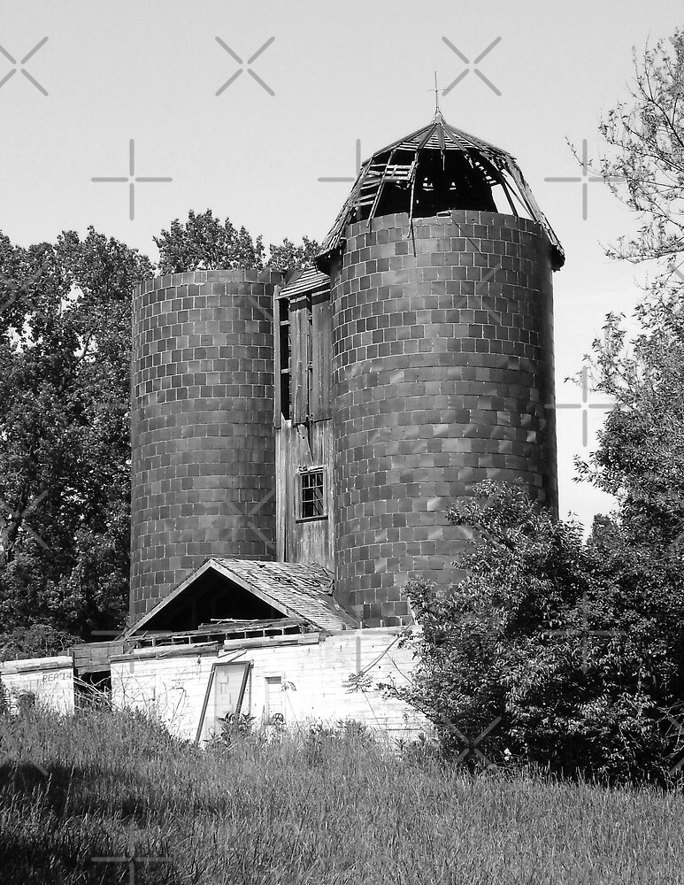 Weathered Farm Silo by Phil Perkins