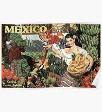 Mexico Land of Tropical Splendor Vintage Travel Poster Poster