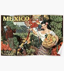Mexico Land of Tropical Splendor Vintage Travel Poster Poster