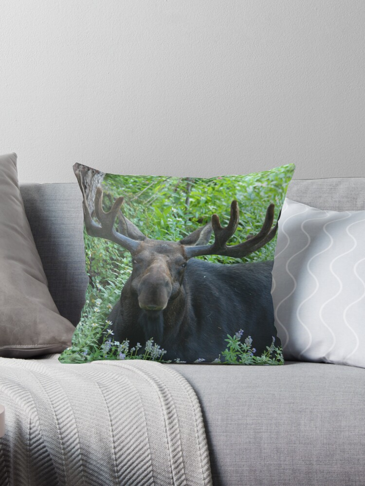 King of The Forest Throw Pillow & Tote Bag by Gene Praag