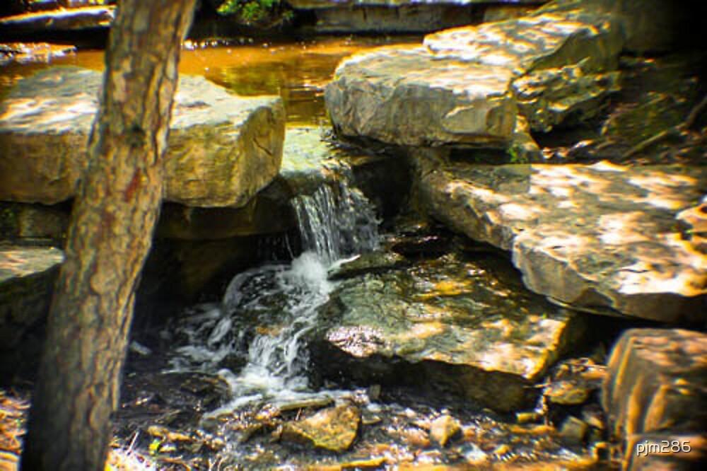 SWEET LITTLE WATERFALL by pjm286
