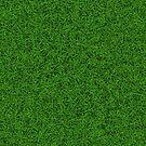 Green Grass by CroDesign