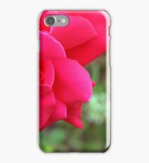Macro on pink rose. iPhone Case/Skin