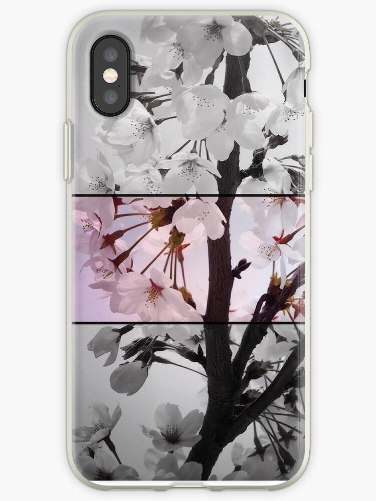 Blossom triptych by DerekEntwistle