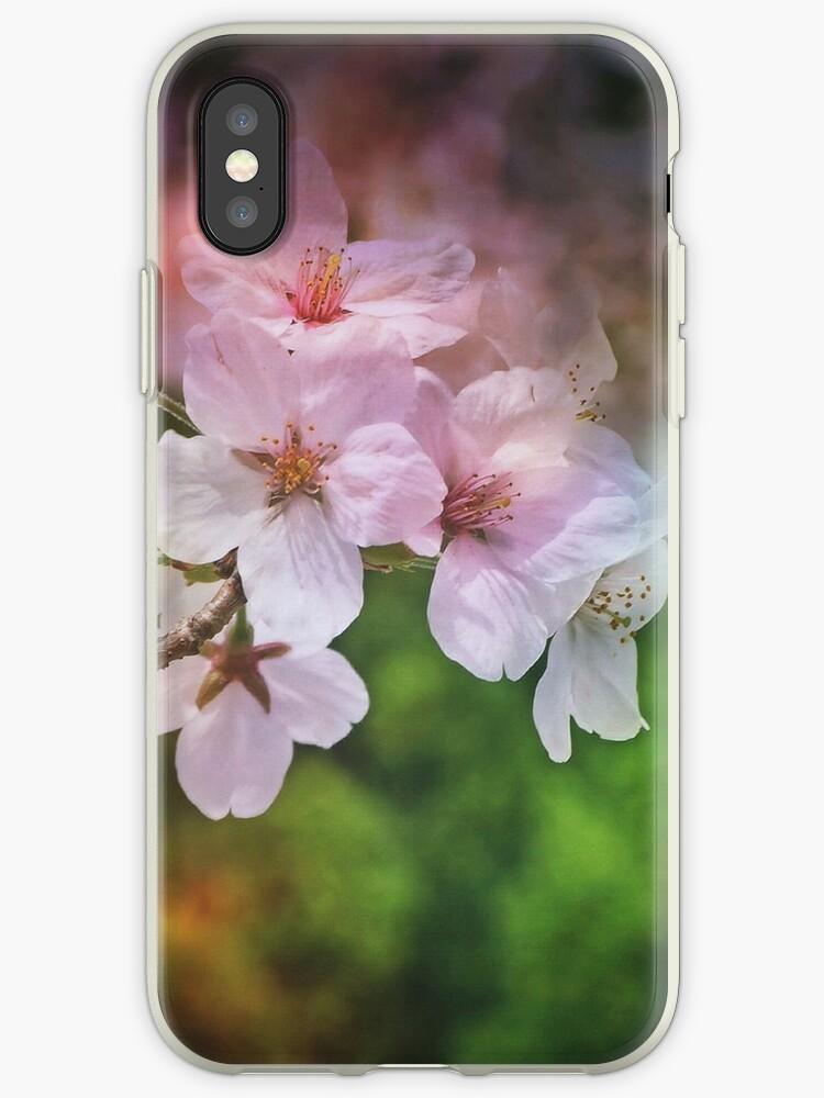 Spring beauty by DerekEntwistle