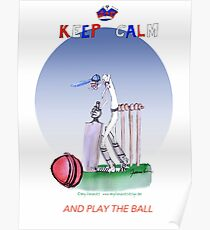 Keep Calm and play the ball - tony fernandes Poster