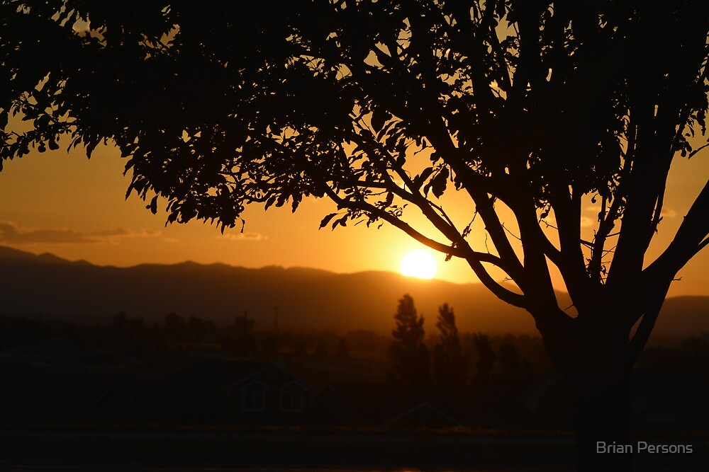 Sunset through the tree by Brian Persons
