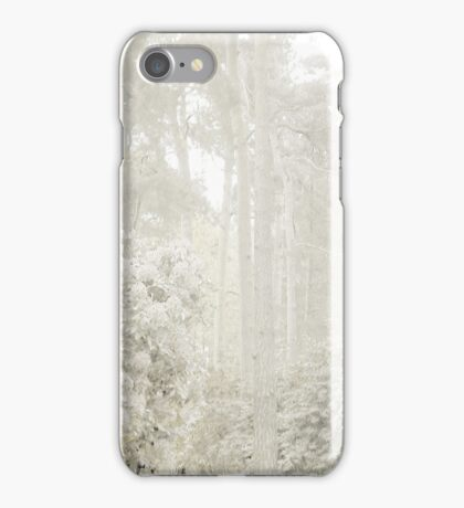 Silver Hues iPhone Case/Skin