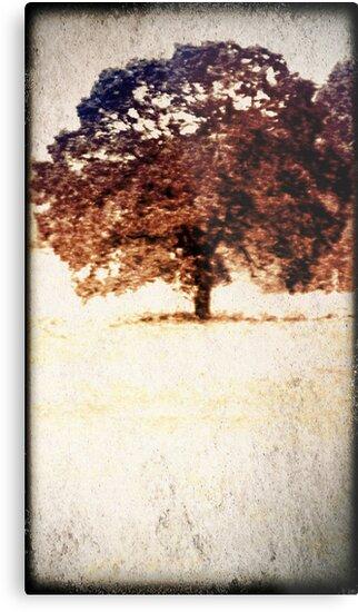 Lone Tree Meadow by karaskye