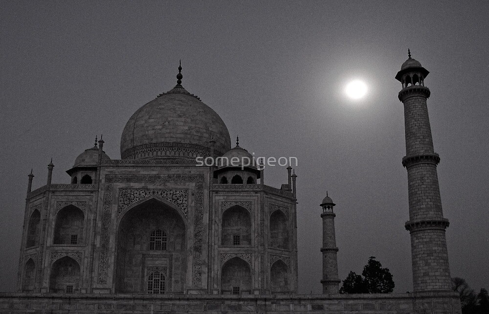 India; Taj Mahal Moon by somepigeon