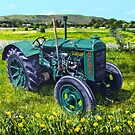 Fordson on the Brooks by Paula Oakley
