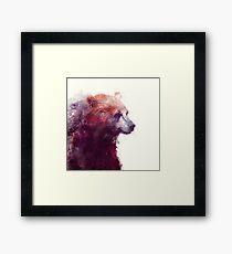 Bear // Calm - Square Format Framed Print