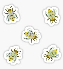 Bee Cool (ayy) Sticker