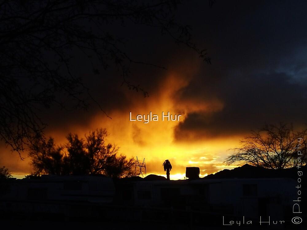Desert Sunset by Leyla Hur