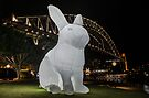 Sydney's Vivid Festival 2014: V by Adam Le Good