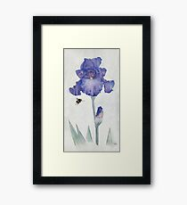 Blue Iris with Bee Framed Print