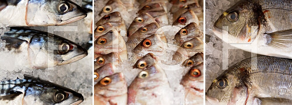 FISH by phphotography