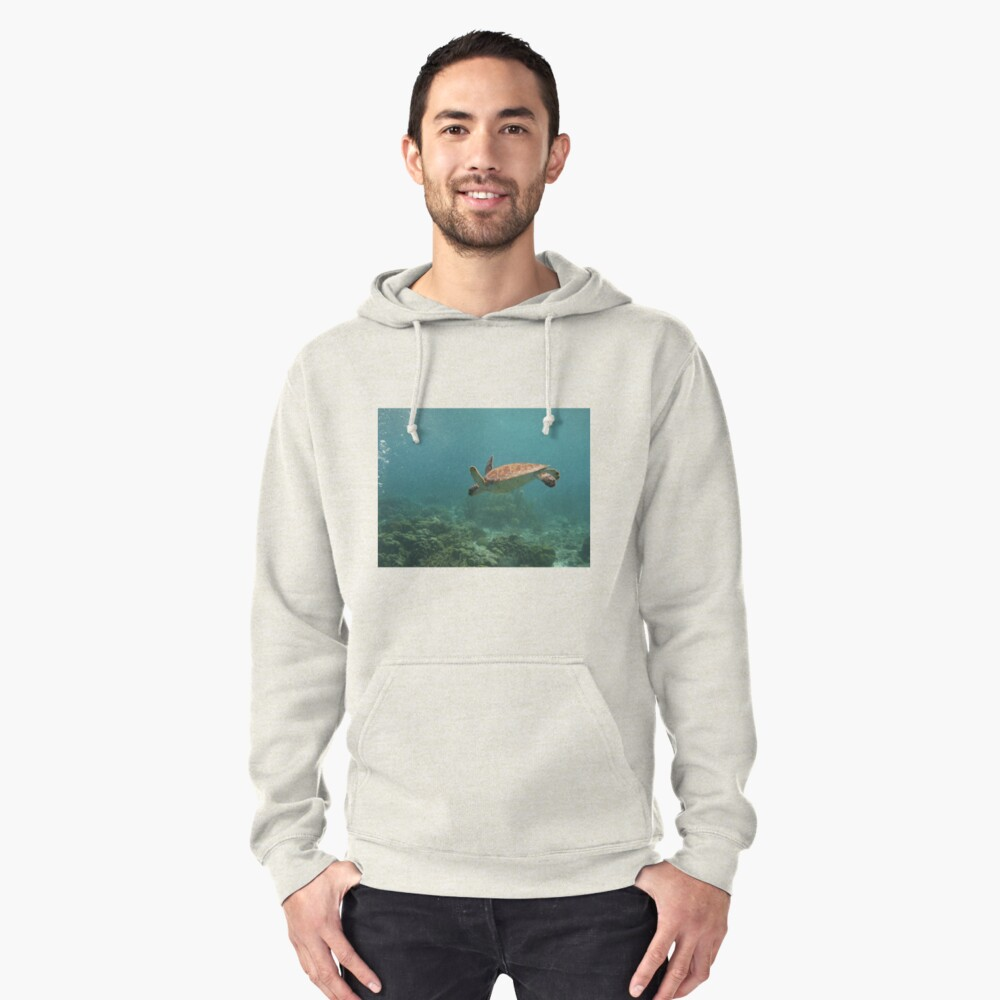 Leisurely Swim Pullover Hoodie Front