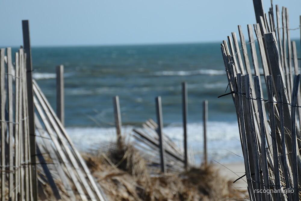 beach-fence by rscognamiglio