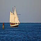 Sailing Away by joeschmoe96