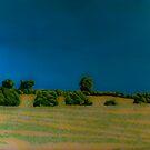 Felt-tip Landscape by George Burrows