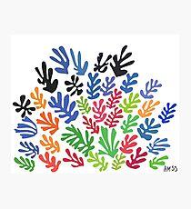 La Gerbe by Matisse Photographic Print