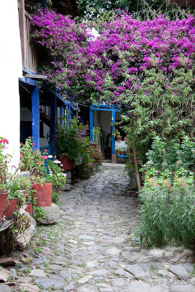 Urubamba Garden by phil decocco