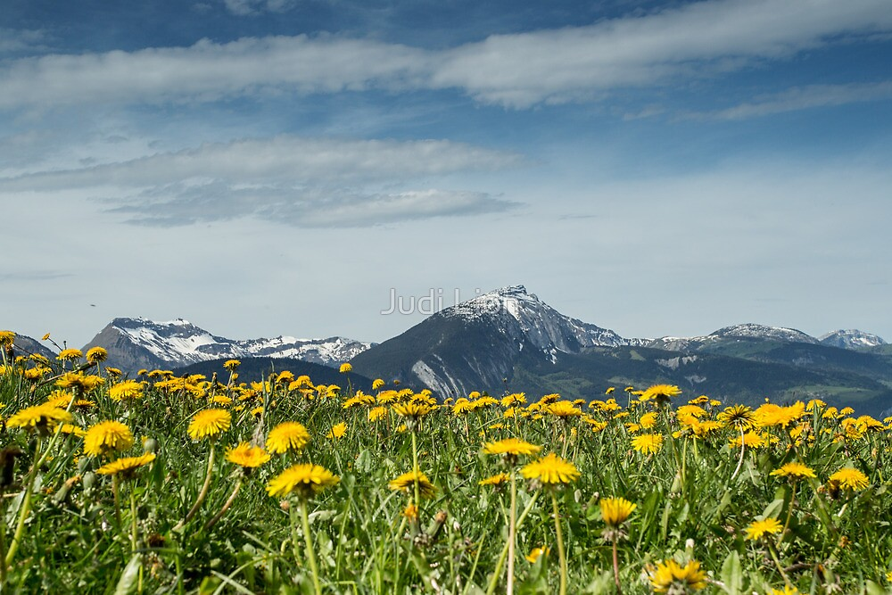 Mountains and flower meadow by Judi Lion