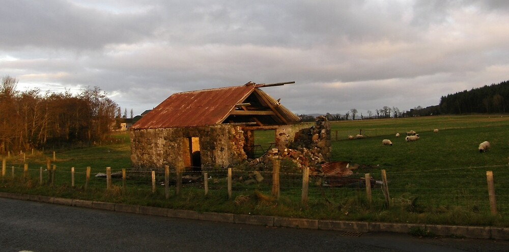 Old Farm Shed Magilligan County Derry Ireland by mikequigley