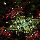 Christmas - Abstract Fractal Artwork by EliVokounova