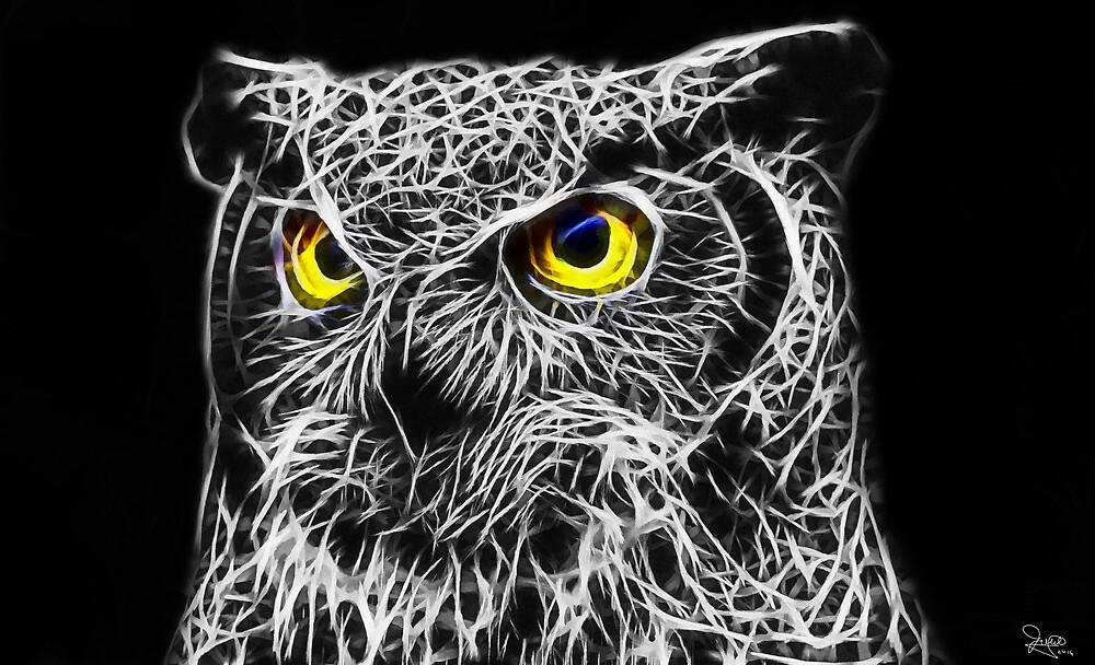 Painted Fractal Owl by JamesAshford