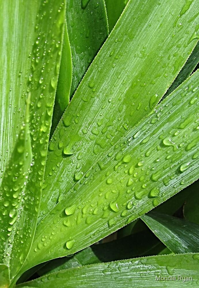 Love a Rainy Day by Monnie Ryan