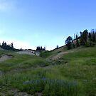 Brian Head Peak in Summer by halabilly