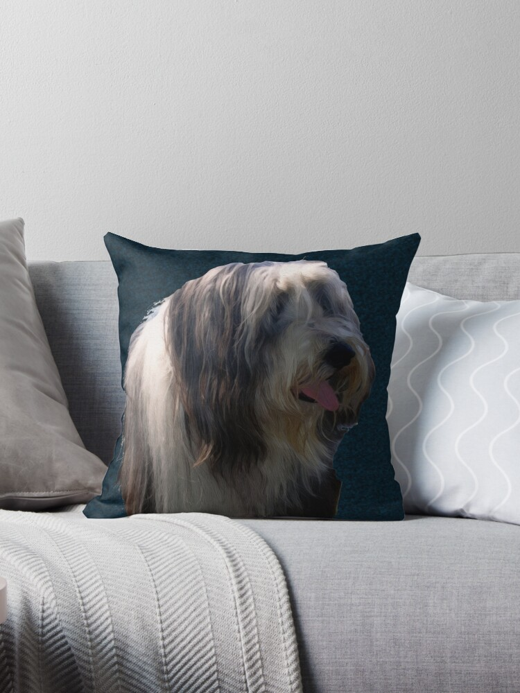 Bearded Collie by dogplay