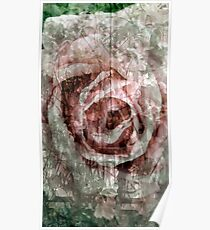 Rose Collage Poster