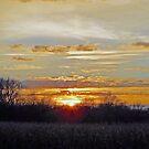 November Sunset by kkphoto1