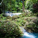 Treasures of Vanuatu by KerryPurnell