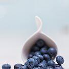 still life ~ blueberries by Adriana Glackin