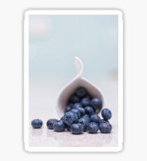 still life ~ blueberries Sticker