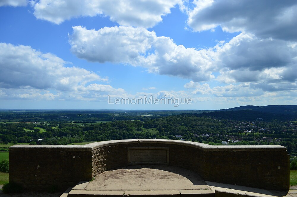 Amazing view from Box Hill, Surrey, UK by LemonMeringue