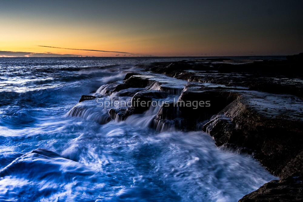 Seascape 1 - Terrigal by Splendiferous Images