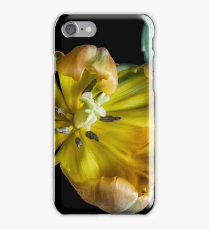 Mellow Yellow iPhone Case/Skin
